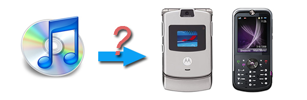 Convert iTunes music and play with Motorola MP3 Player